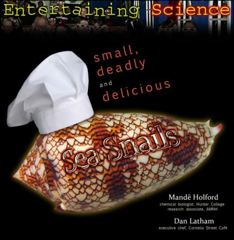 Sea_Snails_600px