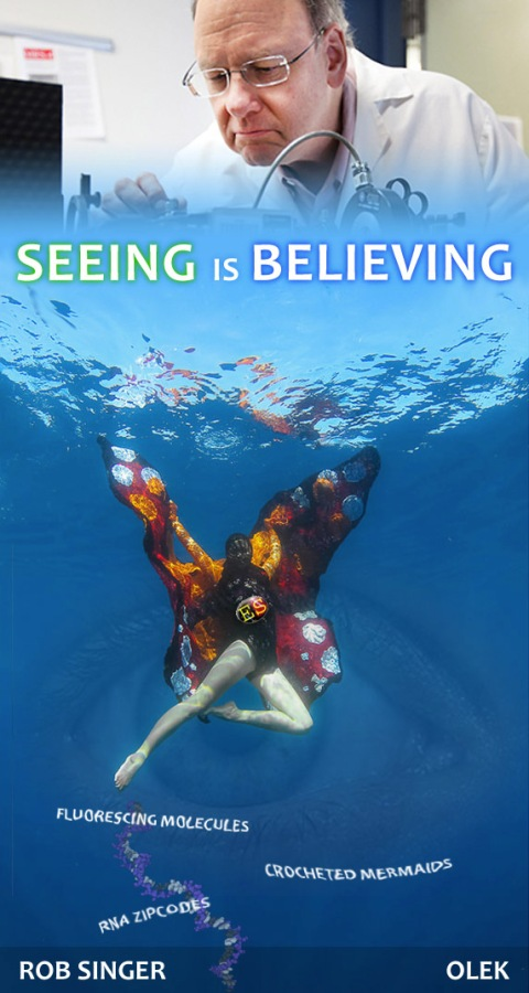 Seeing_is_Believing_eye