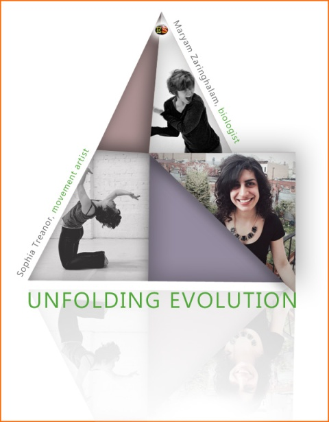 unfolding_evolution